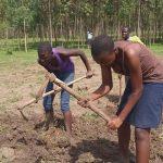 Boys working in the garden